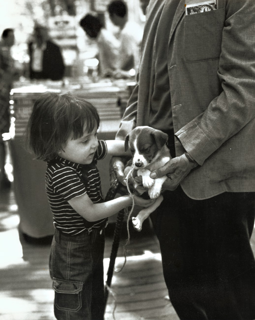 Dorka Raynor - Boy with Puppy, Barcelona, Spain