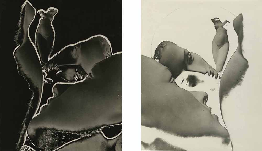 James Hamilton Brown - Solarizations, Blanc et Noir (Diptych)