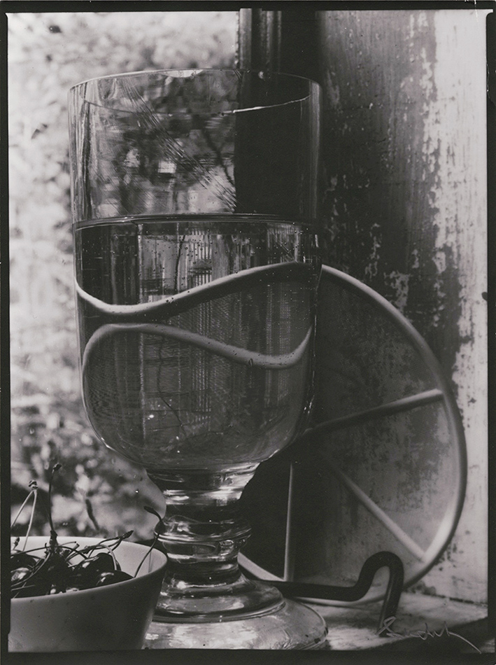 Josef Sudek: A View of a Private World