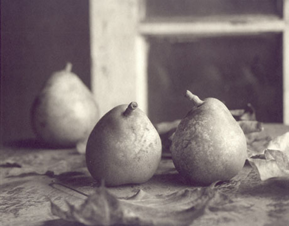 Ray Bidegain - Pears with Leaves